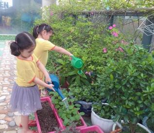 Môi trường thiên nhiên ở trường xanh- sạch – đẹp