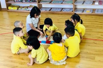 Lớp Montessori - Tree